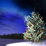 12月7日クリスマスツリーの日